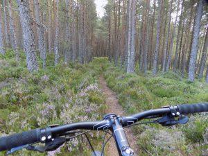 mountain biking in aviemore